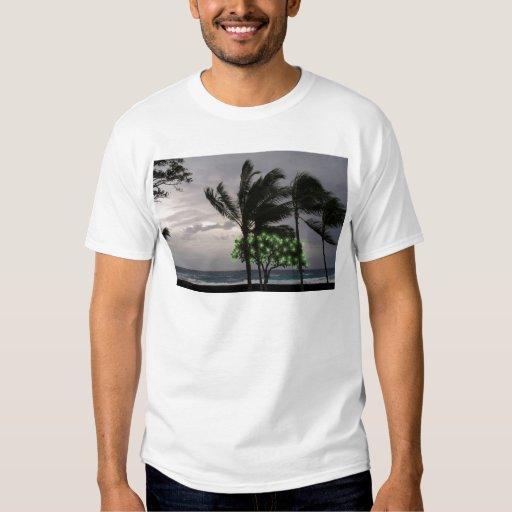 Luces del día de fiesta en las palmeras playeras