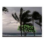 Luces del día de fiesta en las palmeras tarjetas postales