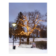 Luces del invierno postal
