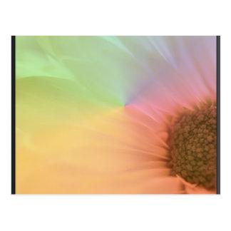Luces en colores pastel postal