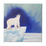 Luces polares azulejo cerámica