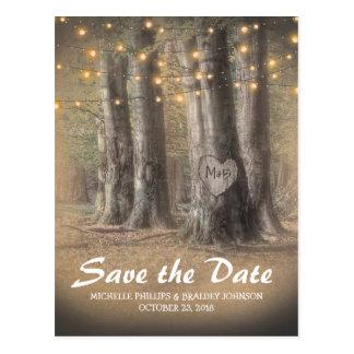 Luces rústicas del árbol y de la secuencia que postal