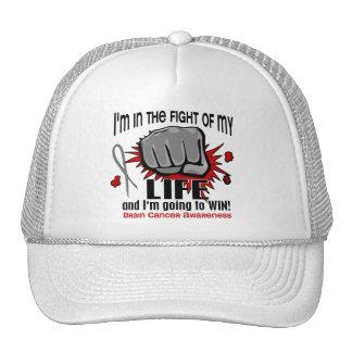 Lucha de mi cáncer de cerebro de la vida 2 gorros