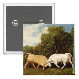 Lucha de toros, 1786 (aceite en el panel) pin cuadrado