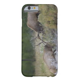 Lucha de toros de los alces, Yellowstone NP, Funda Para iPhone 6 Barely There