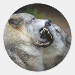 Lucha del lobo pegatina redonda