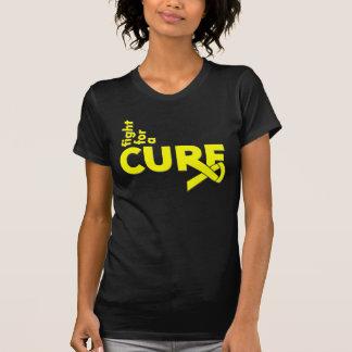 Lucha del sarcoma de Ewings para una curación Tee Shirts