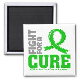 Lucha hepática del cáncer para una curación iman para frigorífico