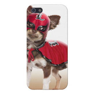 Lucha libre dog ,funny chihuahua,chihuahua case for iPhone SE/5/5s