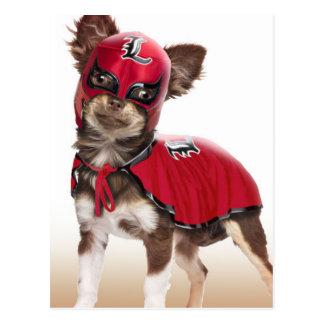 Lucha libre dog ,funny chihuahua,chihuahua postcard