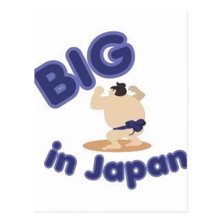 Luchador del sumo grande en Japón Postal