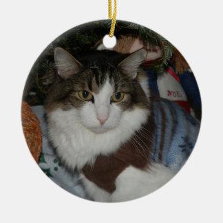 Lucho-Noel-Raindeer jpg Christmas Ornaments