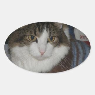 Lucho-Noel-Raindeer.jpg Oval Sticker