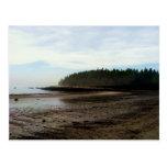 Lucia Beach,Owls Head,Maine Postcard