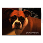 Lucie Monroe portrait Greeting Cards