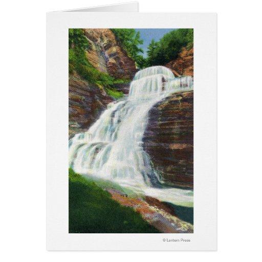 Lucifer Falls View in Robert H. Treman State Card