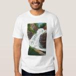 Lucifer Falls View in Robert H. Treman State Shirt