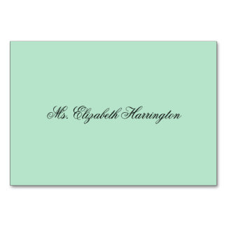 Lucite Green Place Cards Name Template Table Cards
