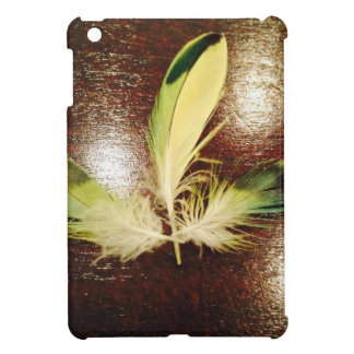 Luck feathers… on wood cover for the iPad mini