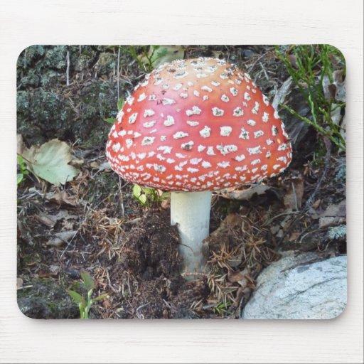 Luck mushroom mouse pad