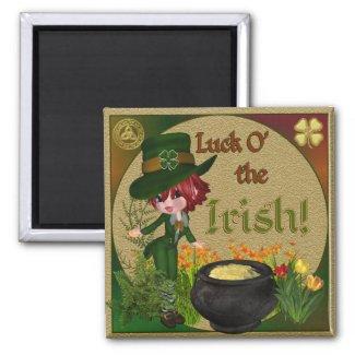 Luck O' the Irish Leprechaun magnet