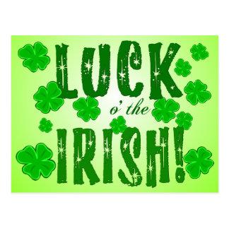 Luck o the Irish Lucky Green Shamrocks Postcard