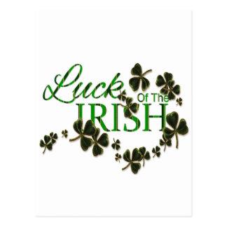 Luck of the Irish Postcard