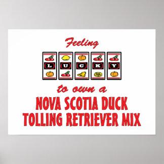 Luck to Own Nova Scotia Duck Tolling Retriever Mix Print
