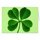Lucky 4 Leaf Clover Greeting Card