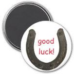 Lucky Antique Horseshoe Fridge Magnets