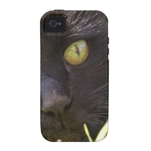 Lucky black cat Case-Mate iPhone 4 case