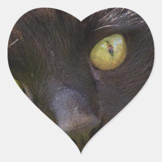 Lucky black cat heart sticker