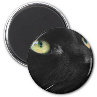 Lucky Black Cat Magnet