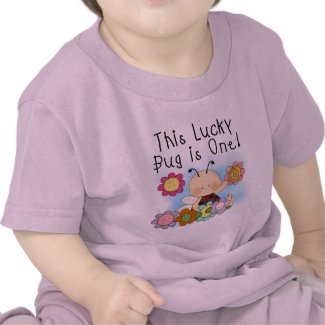 Lucky Bug 1st Birthday T-shirts and Gifts shirt