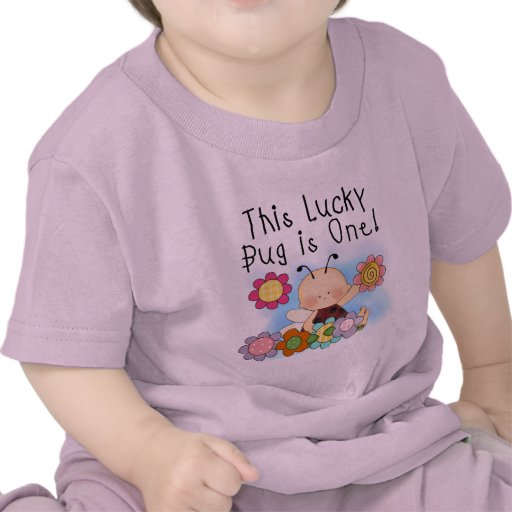Lucky Bug 1st Birthday T-shirts and Gifts