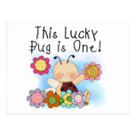 Lucky Bug 1st Birthday T-shirts and Gifts Postcard