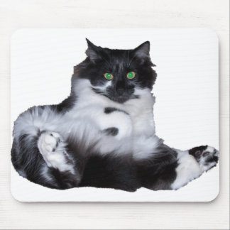 lucky cat mouse pad