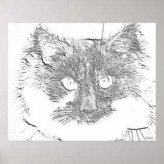 lucky cat poster