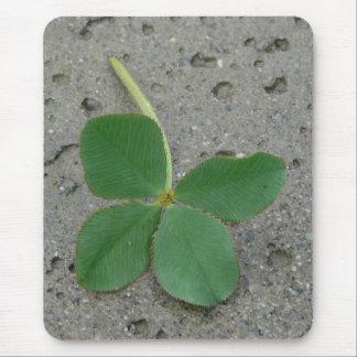 Lucky Charm Four Leaf Clover Photo Mouse Pads
