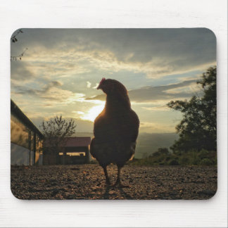 Lucky chicken mouse pad