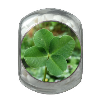 Lucky Clover Glass Candy Jars