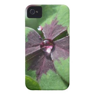 Lucky Clover iPhone 4 Case