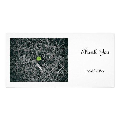 lucky clover photo greeting card