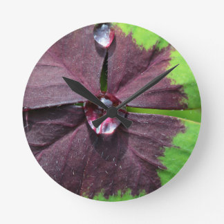 Lucky clover with a water drop round clock
