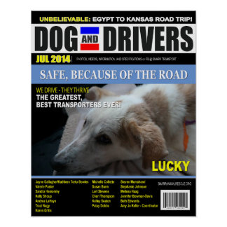 Lucky - Dog and Driver Posters