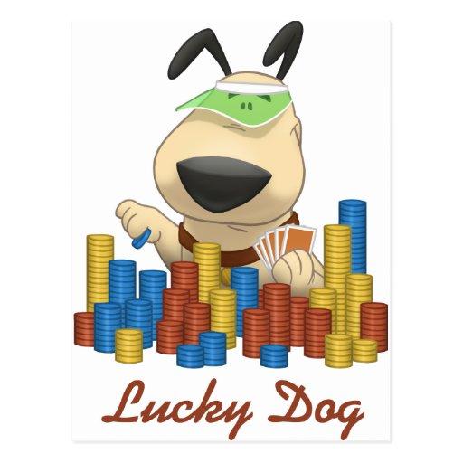 Lucky Dog Post Card