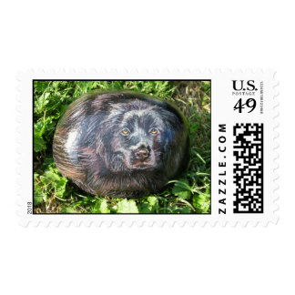 """""""Lucky"""" dog rock stamp"""
