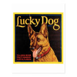 Lucky Dog Vintage Crate Label Postcard