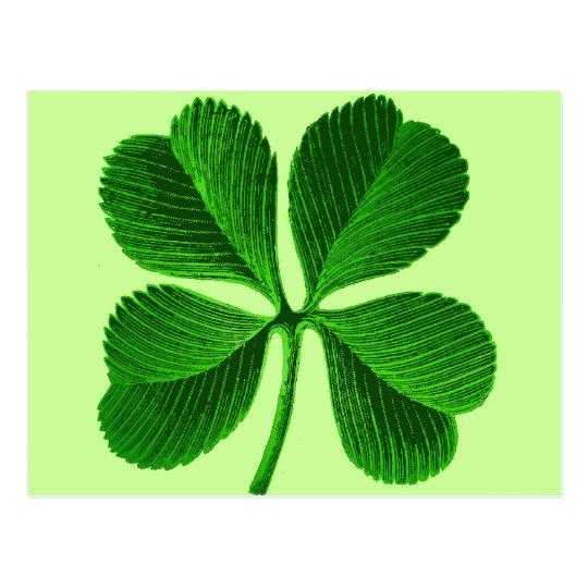 Lucky Four Leaf Clover Postcard