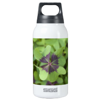 Lucky Four-Leaf Clover Shamrock Liberty Bottle 10 Oz Insulated SIGG Thermos Water Bottle